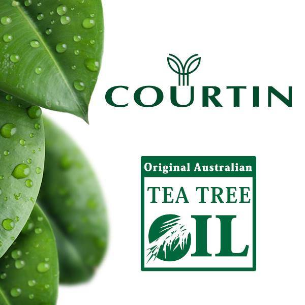 Courtin oil tree commercial